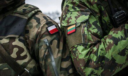 Polscy terroryści aresztowani naLitwie? Fake news izhakowane konta posłów
