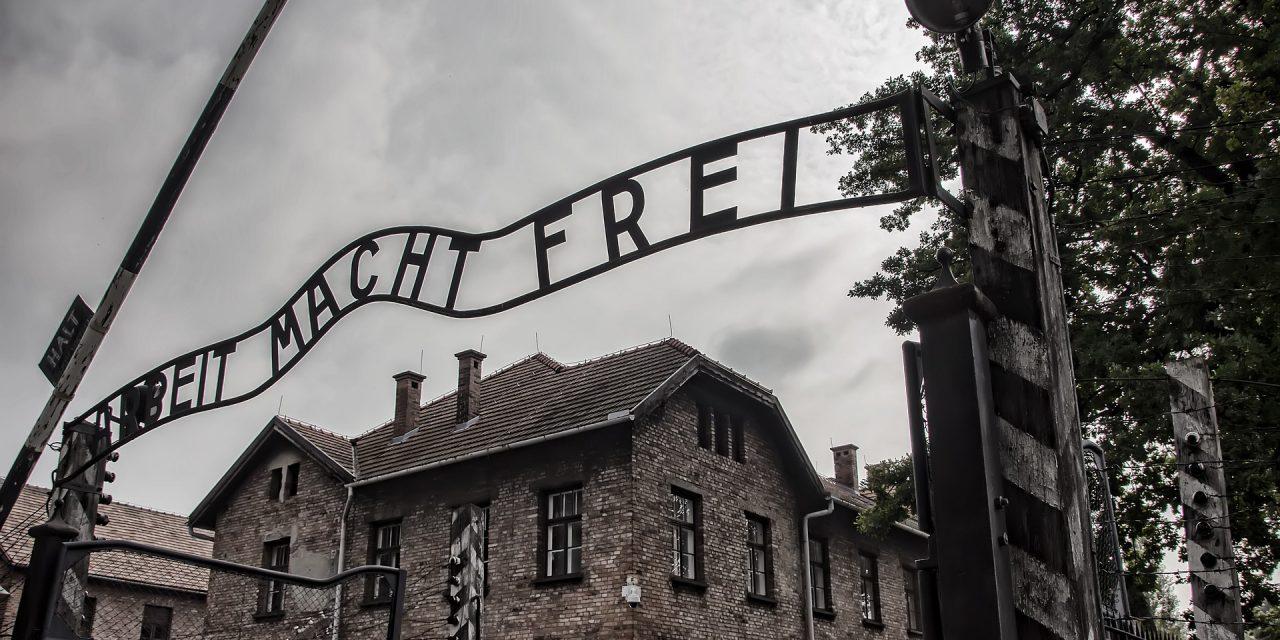 Nie, negujący Holokaust historyk nieorganizował wycieczek doobozów koncentracyjnych zaprzyzwoleniem polskiego rządu