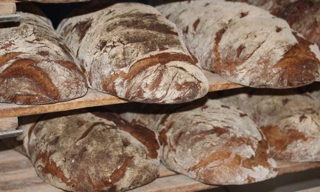 Czycena chleba wzrosła o50% wprzeciągu ostatnich 4 lat?