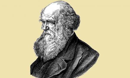 Argumenty przeciwko ewolucji wpodręczniku doreligii? Manipulacja kontekstem